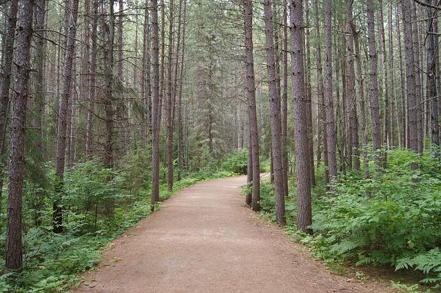 trail-1748094_640
