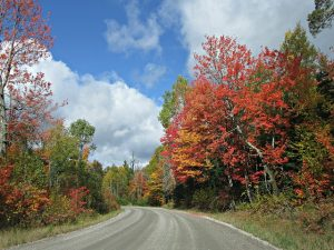 autumn-1039681_640