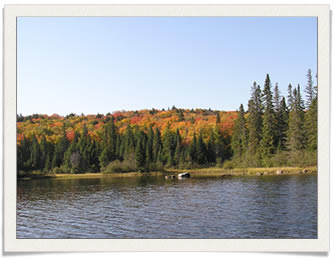 Algonquin Park in the Fall
