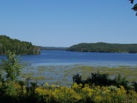 Limerick Lake